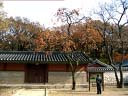jongmyo #1, royal shrine